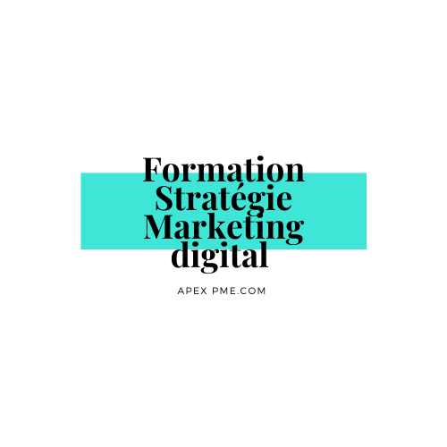 Formation stratégie marketing digital apex pme